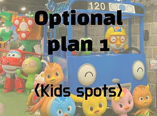 Optional plan 1