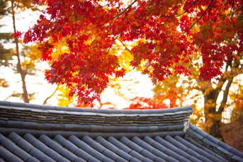 Dosan Seowon Confucian