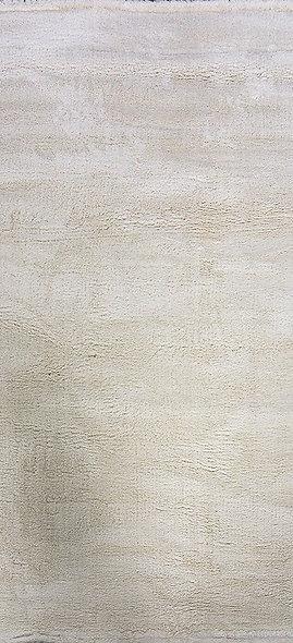 8301 WHITE