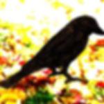 Happy Sparrow.jpg