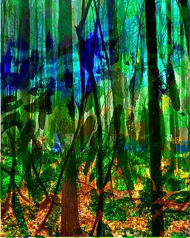 Untitled_Artwork 9.jpg