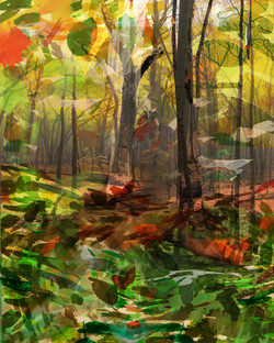 Gubbay,_Diana,_A_Walk_In_The_Woods