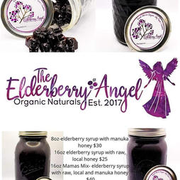 The Elderberry Angel Spring, Texas