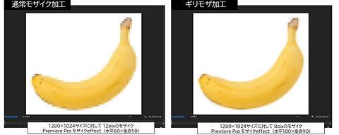 モザイク規定.jpg