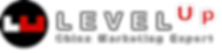Levelup logo.png