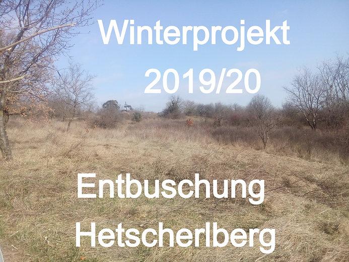 hb%2035_edited.jpg