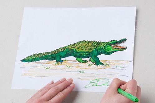 Alligator PDF Lesson