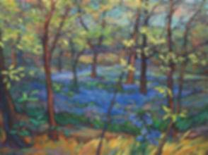 L. Fink - Spring Ephemerals (3).jpg