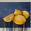 Thumbnail: Fiber Art Zoom Workshop with Allison Meixell