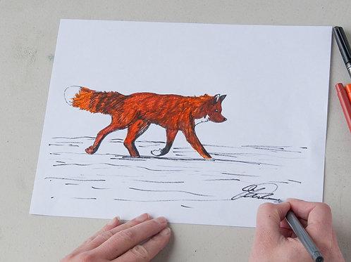 Fox PDF Lesson