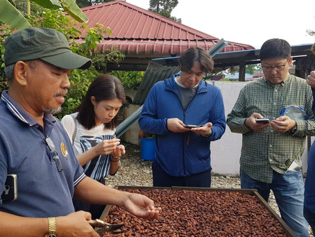 Pâtissier Cocoa Farm and Grinder Tour and Workshop For All Nippon Airways  and Classic Fine Foods