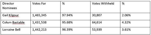 final high res vote 2020.JPG