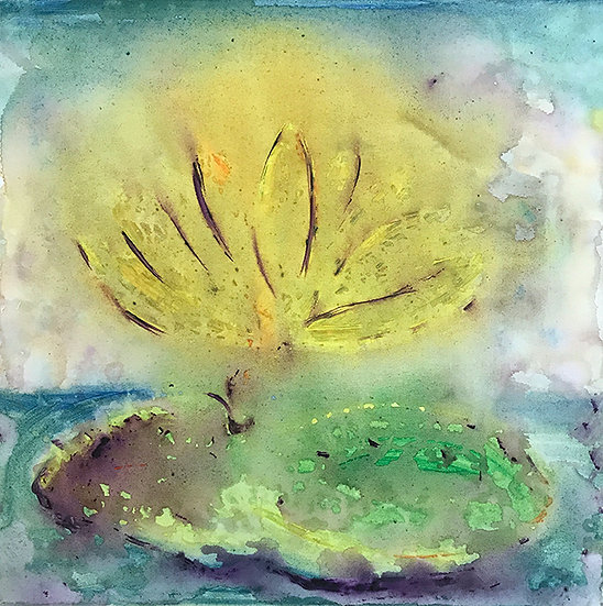 Lily Pond by Virginia Cook