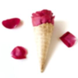 Plantes aromatiques et médicinales. Paysanne-cueilleuse. Tisanes et bâtonnets glacés issus de l'agriculture biologique. Ferme en permaculture.