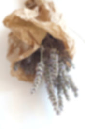 Plantes aromatiques et médicinales. Paysanne-cueilleuse. Bâtonnets glacés issues de l'agriculture biologique. Ferme en permaculture.