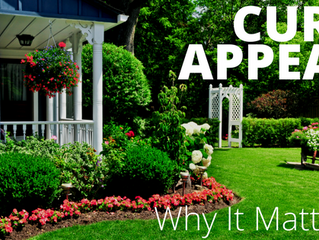 Why Landscaping Adds Value to Your Home