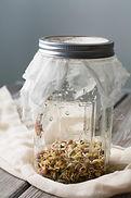 mason jar with lid.jpeg