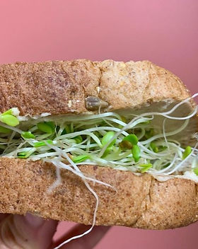 Toast with Hummus and Clover Sprouts.jpg