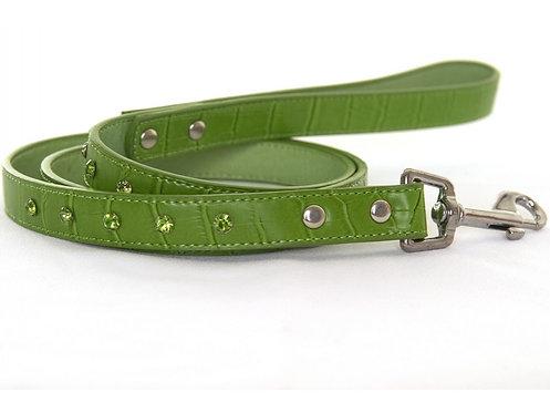 crocodile rock dog lead