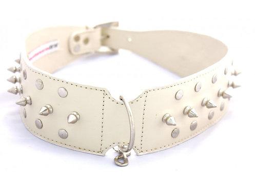 Gladiator dog collar