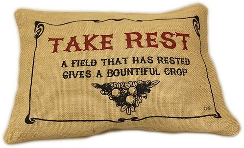 take rest quote cushion