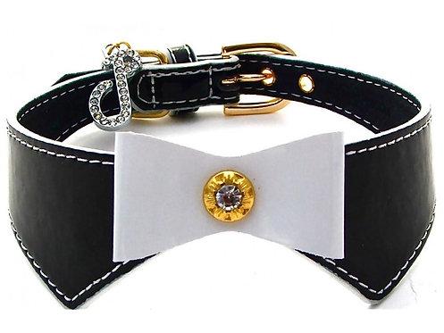 posh boy bow tie dog collar