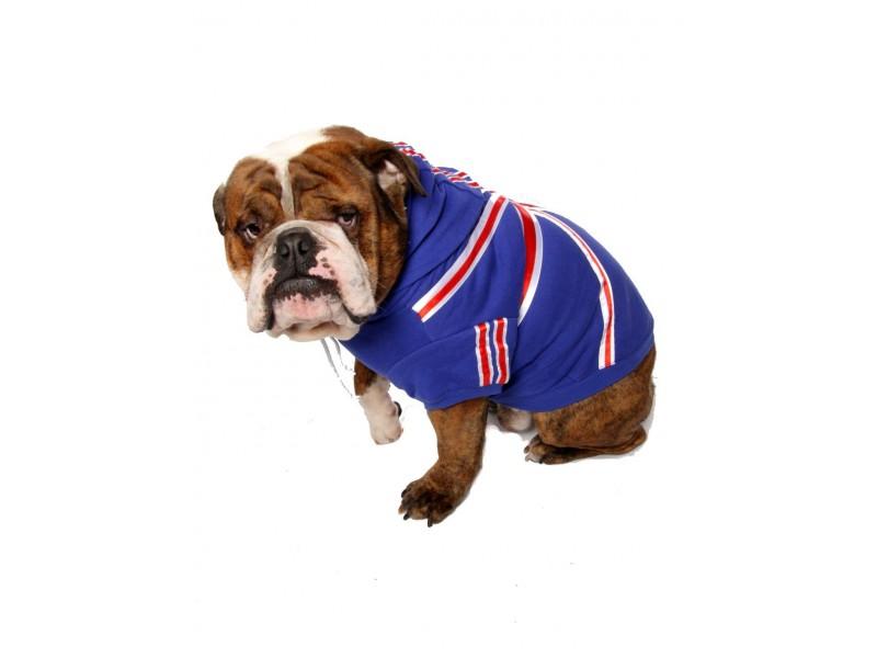 Union Jack Dog Hoodie