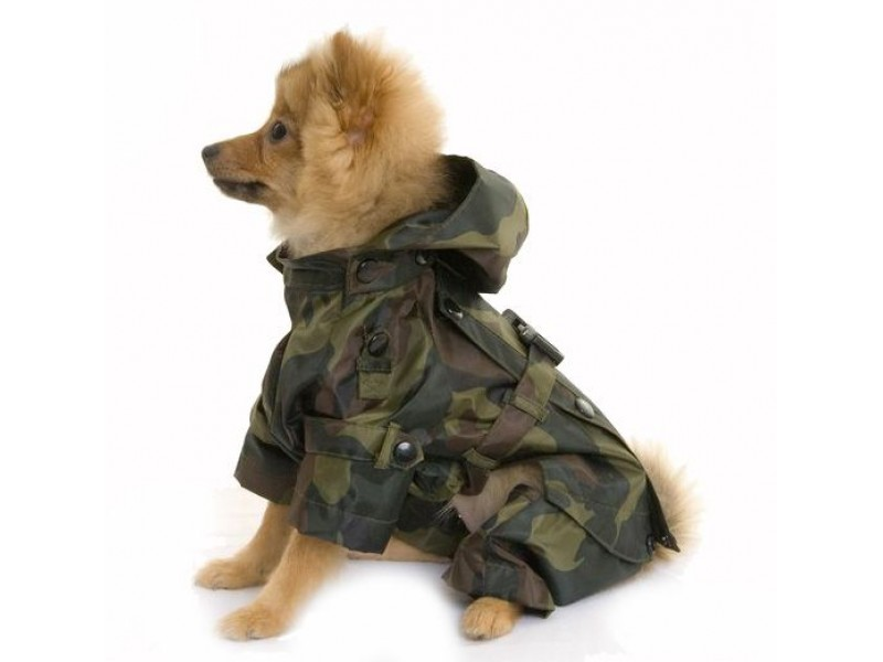 All-In-One Camo Dog Coat