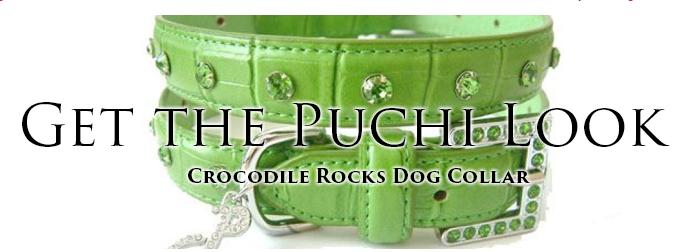 Puchi Pets