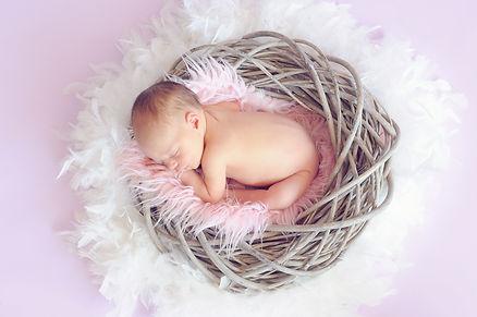 baby nest.jpg