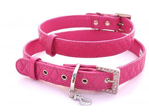 fuchsia dog collar