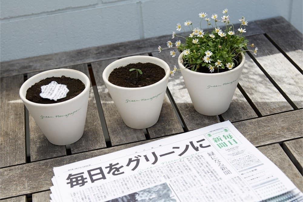 Se trata de un periódico fabricado con papel vegetal reciclado, el cual puedes plantar después de leer.