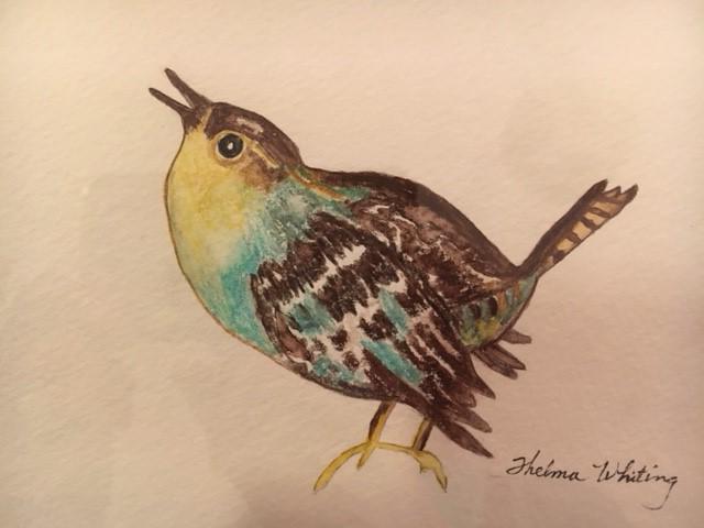 Bright Eyed Bird (graphite & wc)