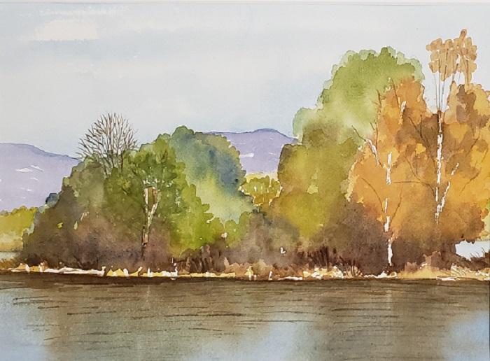 Willband Creek, Abbotsford