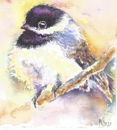 Chubby Bushbird