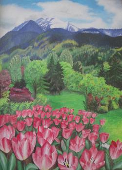 Minter Garden Tulips