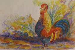 Cock O'Doodle