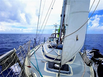 convoyage bateau skipper professionnel