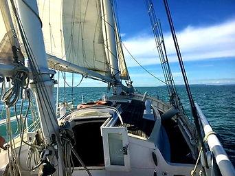 convyage skipper professionnel