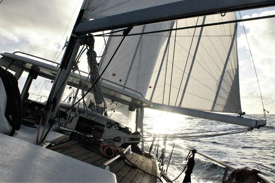 tarif convoyage skipper professionnel
