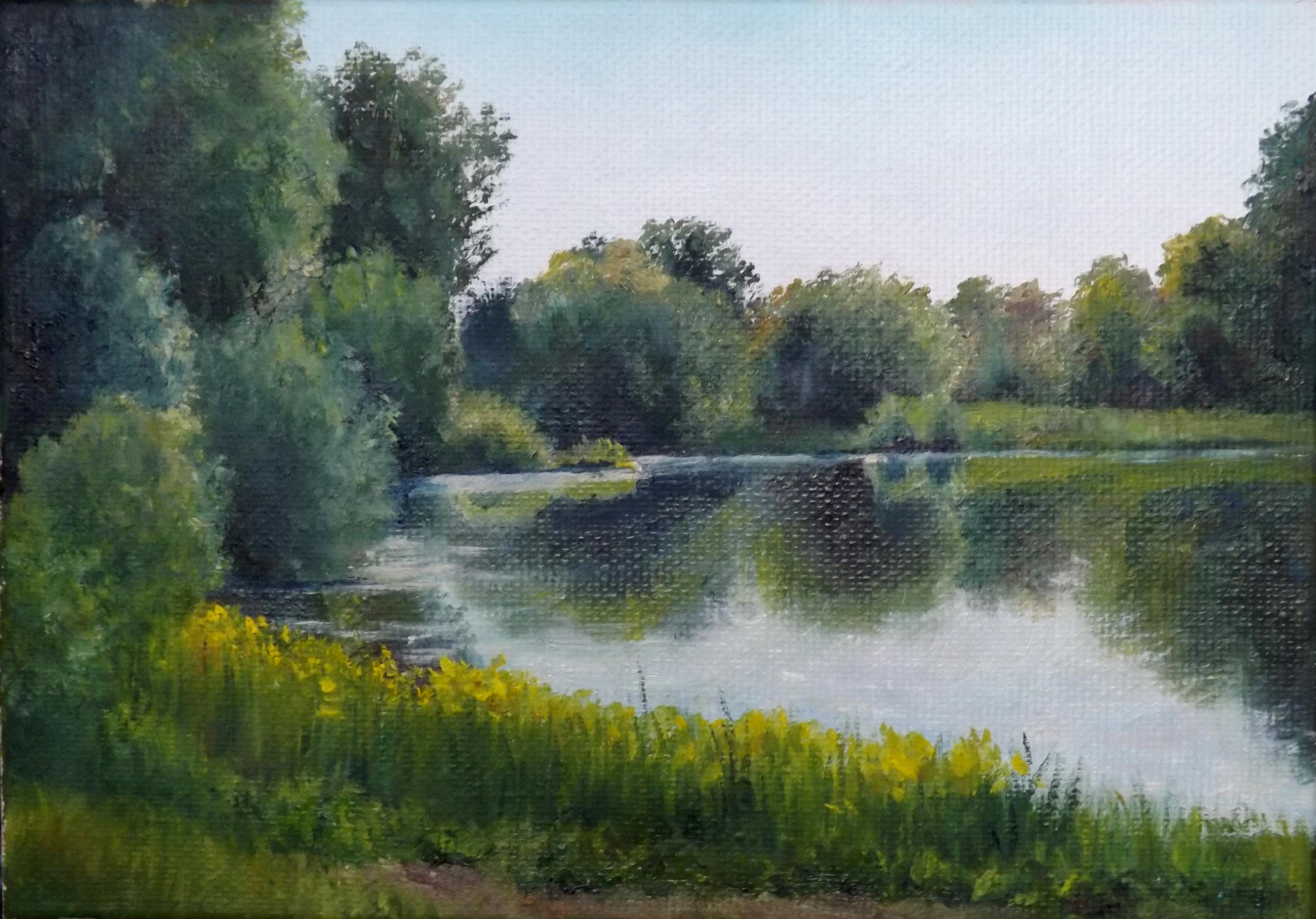 Ирисовый пруд,20 х 30