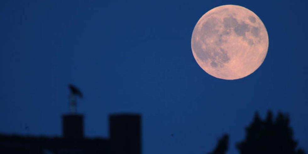 Moon Gathering
