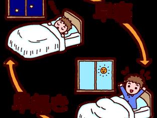 早寝早起き病知らず
