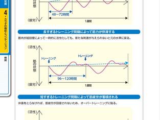 トレーニング頻度と効果について