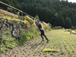 農業から学ぶ姿勢、可動域とトレーニング