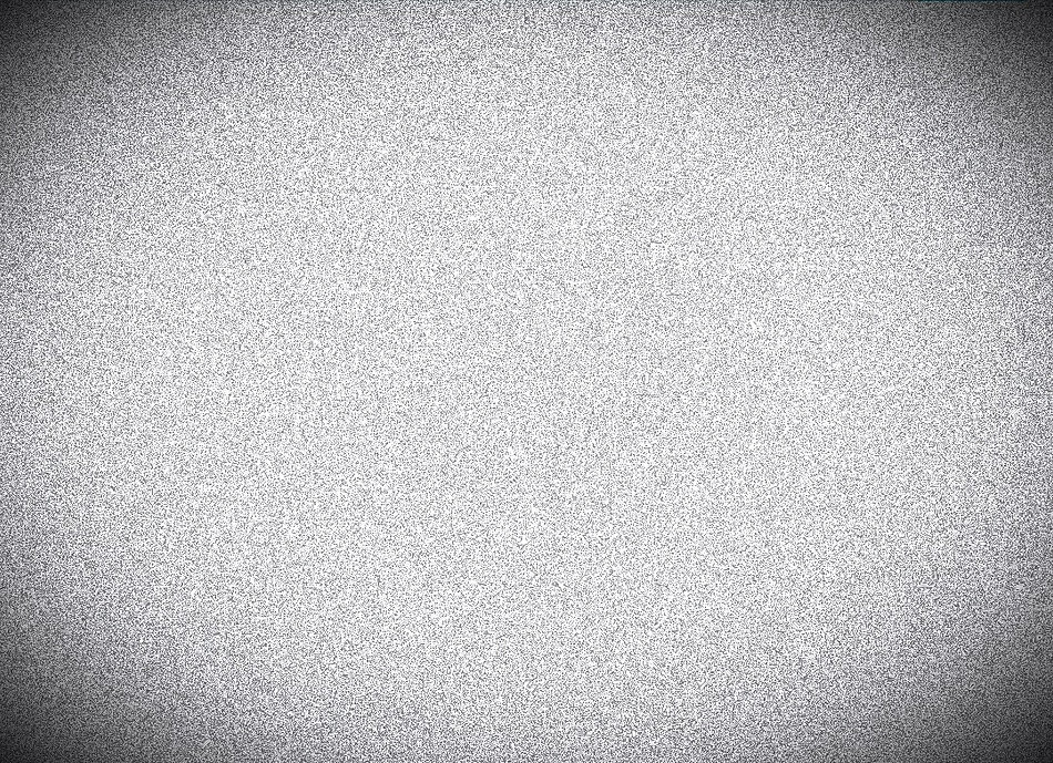 white_edited.jpg