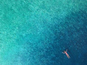 Floating Wild