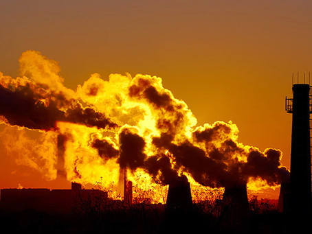Environmental Toxins Effect on the Aging Brain