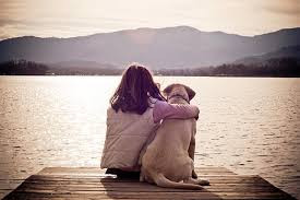 Our Canine Companions - a Blessed Connection