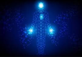The Mind - Body Connection